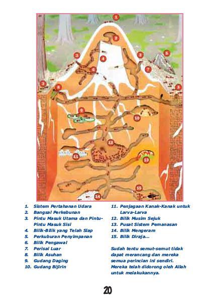 Semut..Dunia Sahabat Kecik Kita20